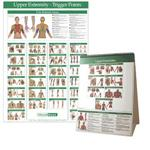 Kent Trigger Point Charts - Upper Extremity