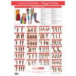 Kent Trigger Point Charts - Lower Extremity