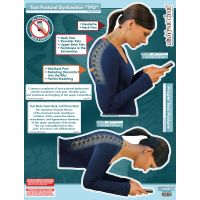"BodyPartChart™ Text Postural Dysfunction (TPD) 39"" x 51"""